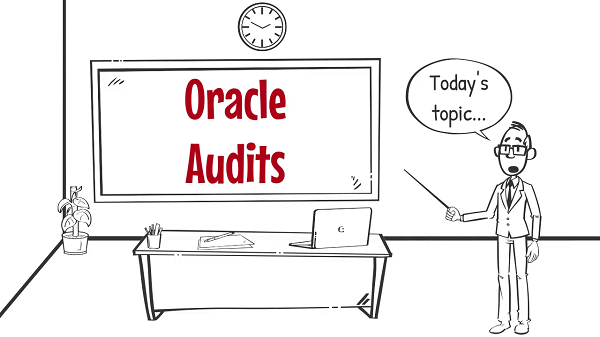 Oracle Audits- Website